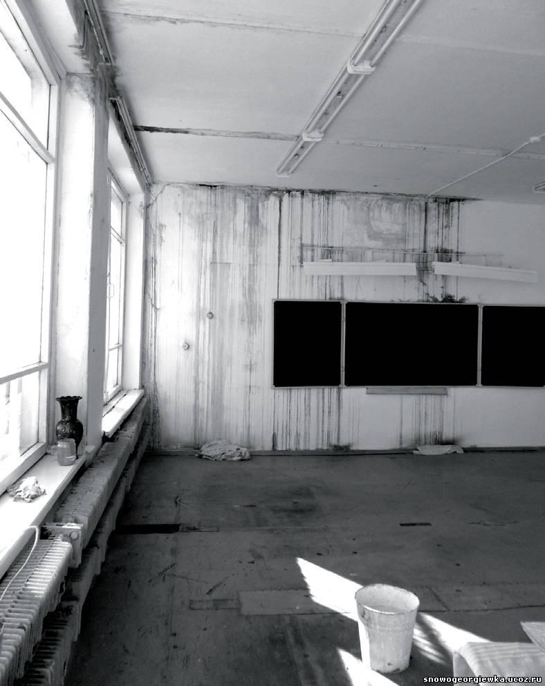 Новогеоргиевская школа